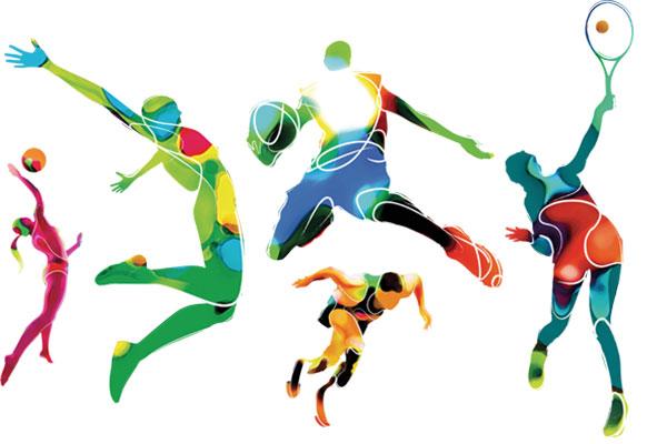 Olah Raga : Sepak Bola, Bascet Ball, Futsal, Voly